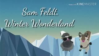 Ajpwmv Winter Wonderland Sam Feldt
