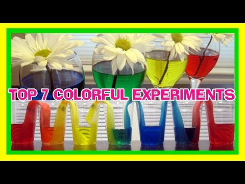 Top 7 Colorful Experiments! EASY KIDS SCIENCE