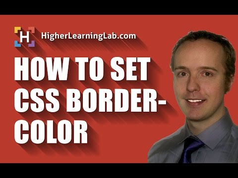 CSS Border Color Property For Beginners