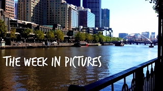 The Week in Pictures - Vlog 127