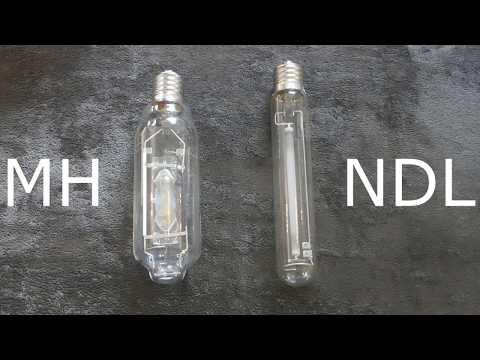 Growbox : Lampen
