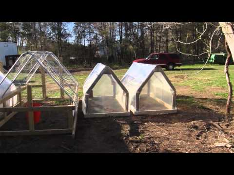 FoodCyclist Farm Video Update 4/25/2013