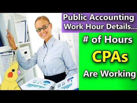 Public Accounting Hours Per Week - Average Hours CPAs Work in Public Accounting (Very Detailed)