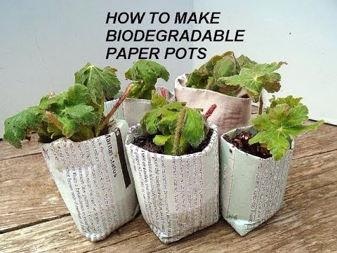 DIY-BEST Biodegradable newspaper pots, plant seeds or cuttings, MONEY MAKING IDEA