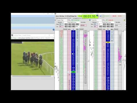 JUMP RACE BACK TO LAY TRADE