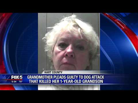 Grandmother pleads guilty to deadly dog attack