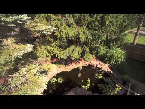 Koi pond aerial