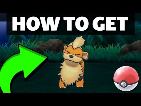 HOW TO GET Growlithe in Sun and Moon