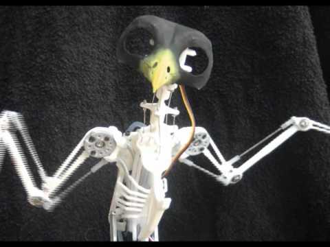 Animatronic Bird Test 2.