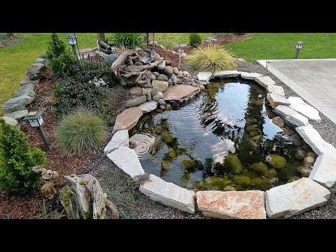 Putting in a small pond    3rd year running