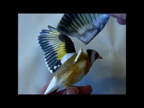Incredibly realistic 3d papercraft bird