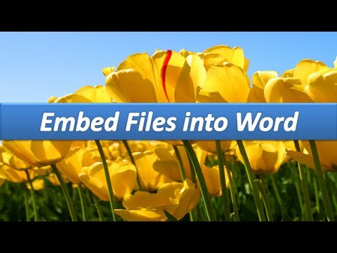Microsoft Word: Embedding files in your document.  AOTraining.net