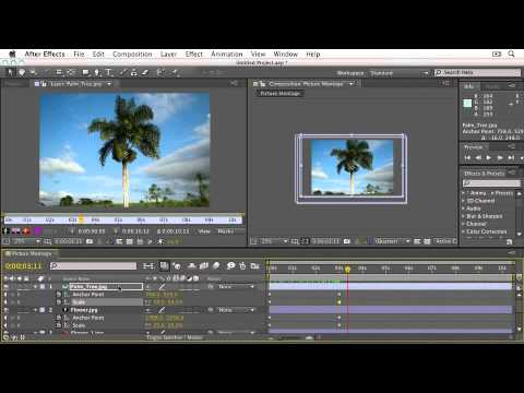 Adobe After Effects CS5: ANIMATION ASSISTANTS  Creating a Picture Montage