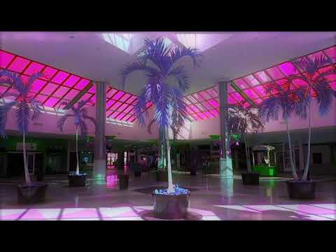 MACINTOSH PLUS- リサフランク420  現代のコンピュー (playing in an empty shopping centre)