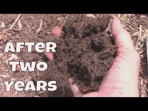 Wood Chip Gardening - What The Wood Chips Look Like After Two Years.
