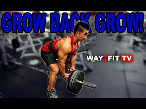 Build a Thicker, Wider Back Now! Learn How to Train like a Bodybuilder with this Epic Workout!