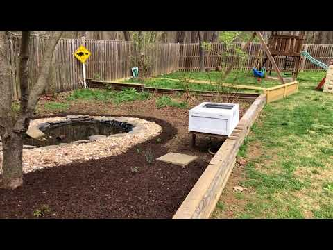 Box Turtle and Wood Turtle Outdoor Enclosure