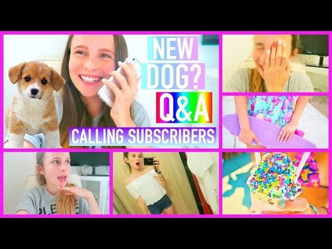 Calling subscribers, Q&A + NEW DOG