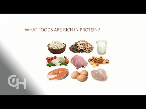 Effect of Protein on Blood Sugars