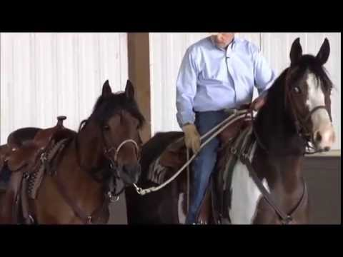 How to Pony Your Horse