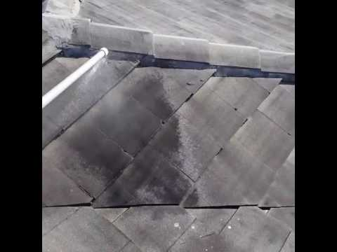Soft Wash Roof Cleaning Wellington Florida 561-907-9541