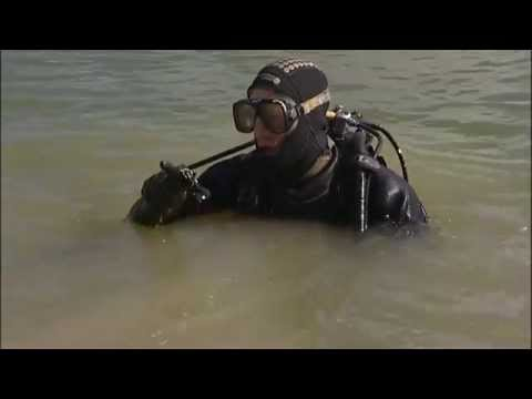 Golf Ball Diver - the best summer job?