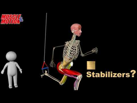 Suspended Lunge , Raised Leg Lunge