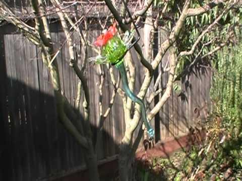 Hummingbird Feeders - Blown Glass Kitras Art Glass