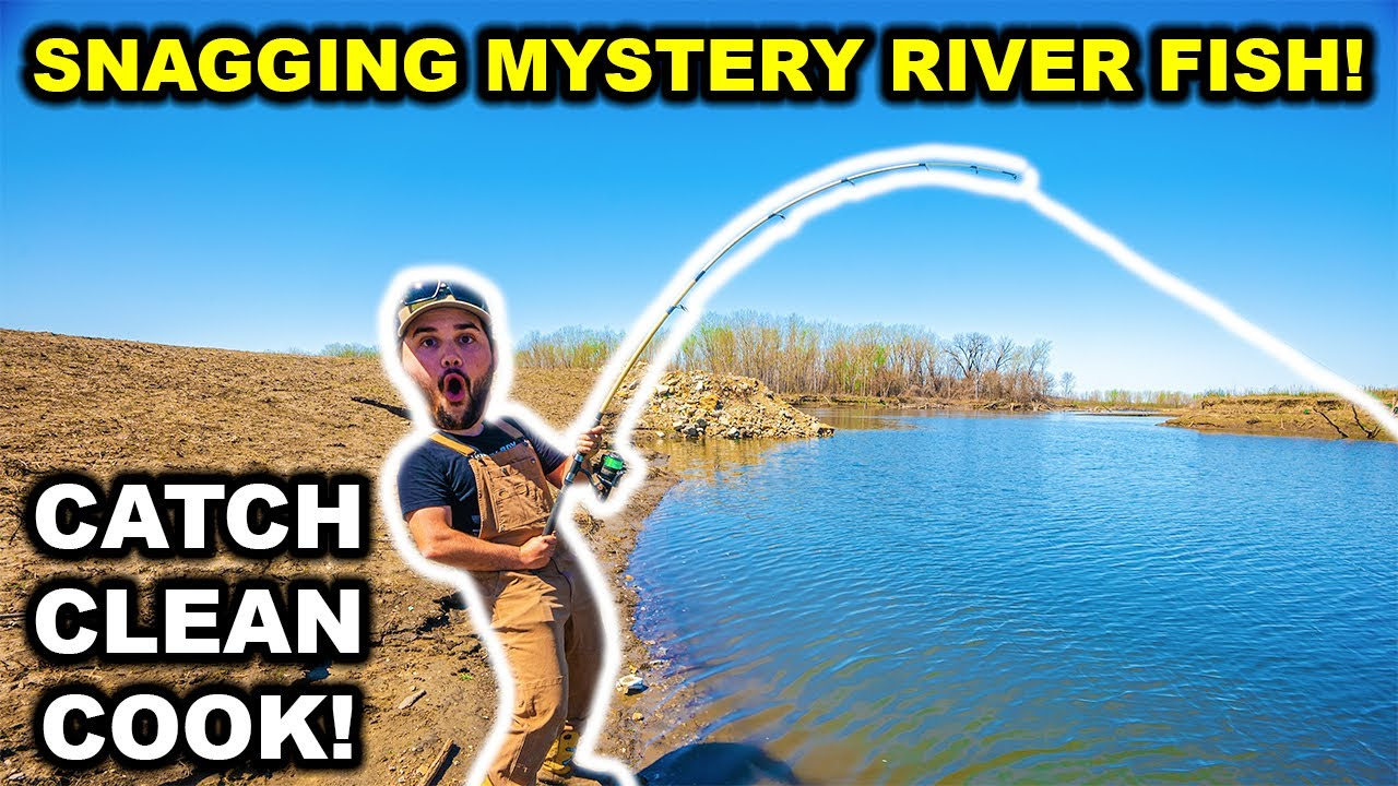 SNAGGING Giant MYSTERY Fish from the RIVER!!! (Catch Clean Cook)