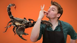 COOKING BUGS FOR KIDS