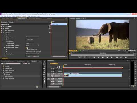How to Add Video Effects in Adobe Premiere