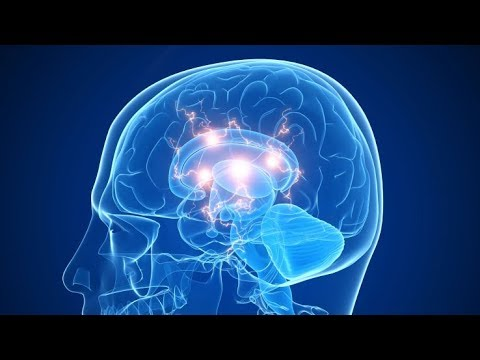 Diagnosing Learning Disabilities in Adults @ The Brain Clinic