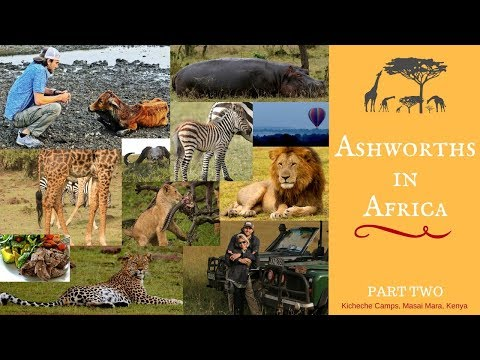 African Safari: Our Experience in Masai Mara National Reserve, Part Two