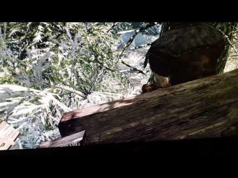 Skyrim opening horse glitch