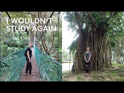 Q & A | WHY I WOULDN'T STUDY AGAIN + VIDEOS WITH MY PARTNER