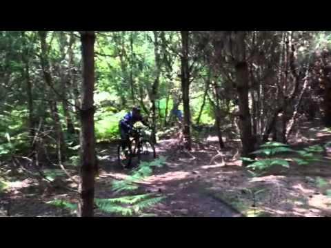 Cycling @ Tunstall Forest