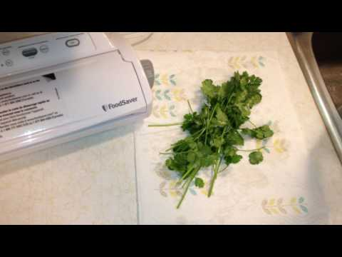 How to Freeze Cilantro From Your Garden