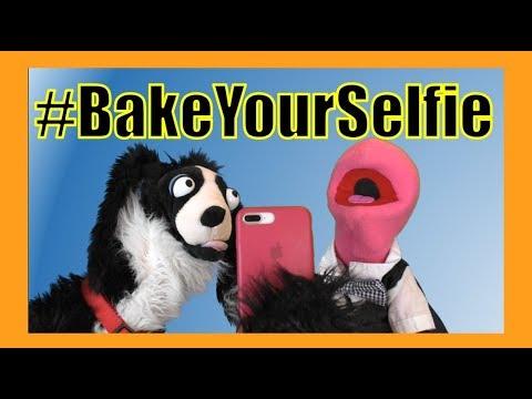 Nailed It Application #BakeYourSelfie :  Sullivan Spaniel
