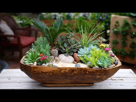 Antique Dough Bowl Turned Succulent Planter
