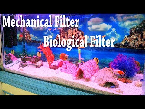 679# Diy Biological Filter | How to Build A Biological Fish Tank Filter (Urdu/Hindi)