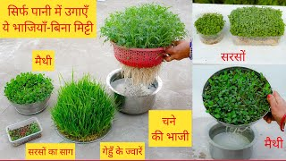 घर पे बिना मिट्टी-पानी में उगाईं जाने वाली सब्ज़ियाँ।Soiless Method|Hydroponic method to Grow Herbs|