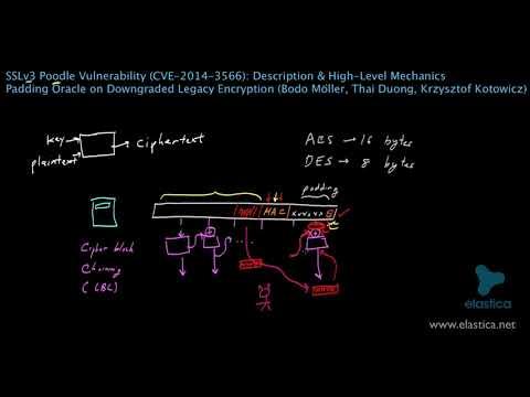 SSLv3 Poodle Vulnerability   Password theft