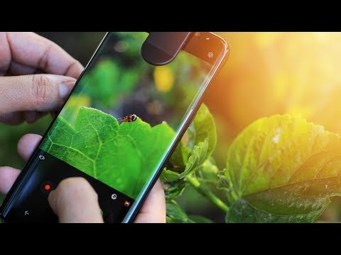 How to Take BETTER SHOTS with your Smartphone