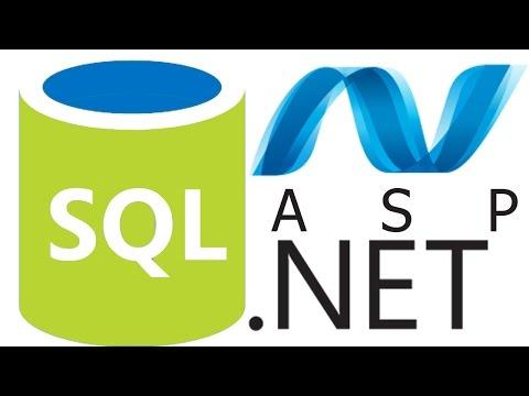الدرس الرابع شرح Sql Server Identity column كامله