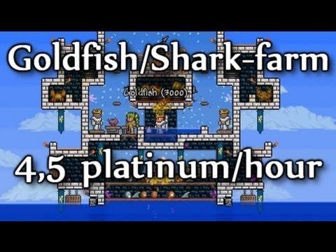 Terraria - 4,5 platinum/hour: Goldfish and Shark farm (goldfarming part 3)