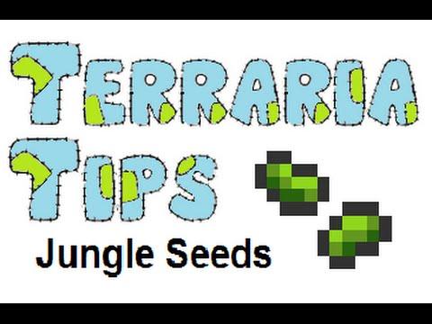 Terraria Tips - Jungle Seed Farming