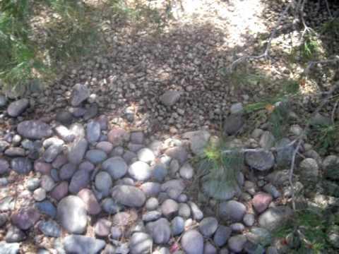 rock path.avi
