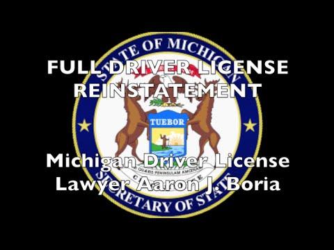 Michigan Driver License Restoration - Michigan DAAD Lawyer