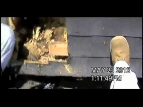 Gotcha Pest Control - Child trapped in bedroom by killer bees
