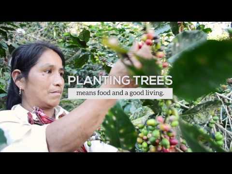 Arbor Day Foundation Vision